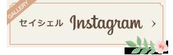 セイシェル instagram